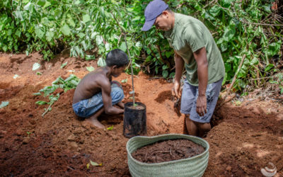 Des légumes et fruits biologiques pour le CHT avec Monde Par la Main