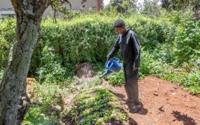 Une formation en agriculture bio et en agronomie pour Ainga